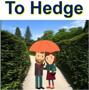 To Hedge