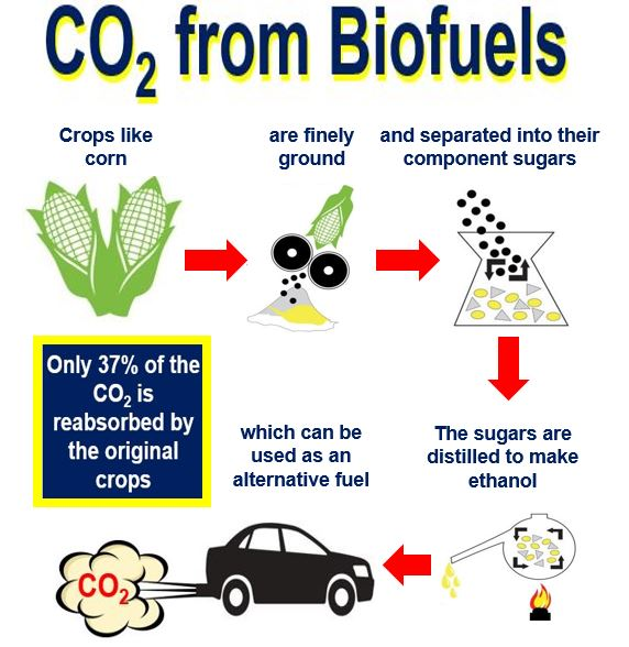 Carbon Dioxide from biofuels