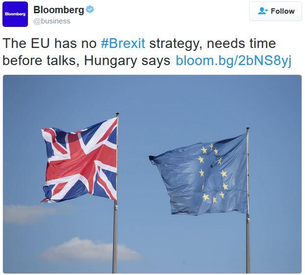EU has no Brexit strategy