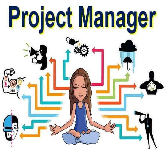 Project Manager - Project management