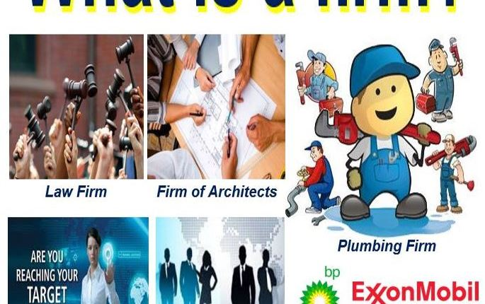What is a firm?
