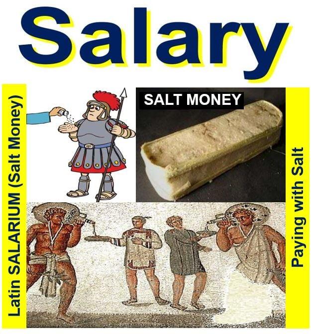Image result for soldier's salt salary