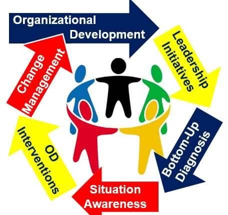 Organizational Development Circle