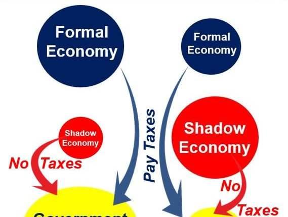 Shadow economy and government revenue