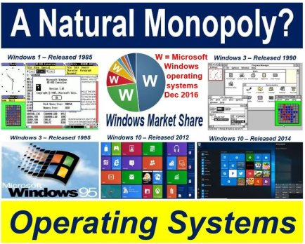 Software is a natural monopoly globally