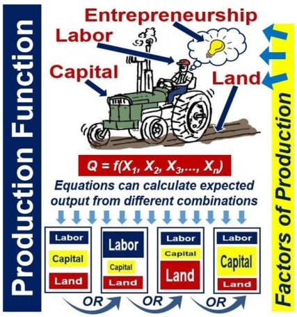 Prodction Function