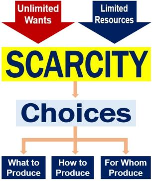 the definition of scarcity