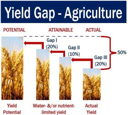 Yield Gap - Agriculture
