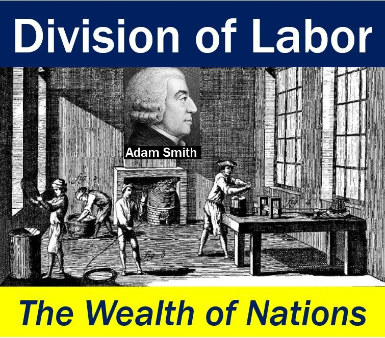 Division of Labor - Wealth of Nations - Adam Smith