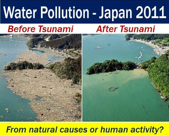 Water pollution from Tsunami in Japan