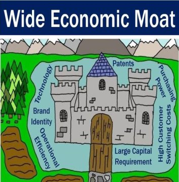 Wide economic moat