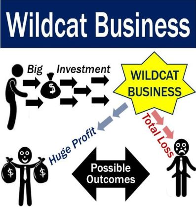 Wildcat Business