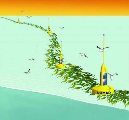 seaweed - NOMAD system