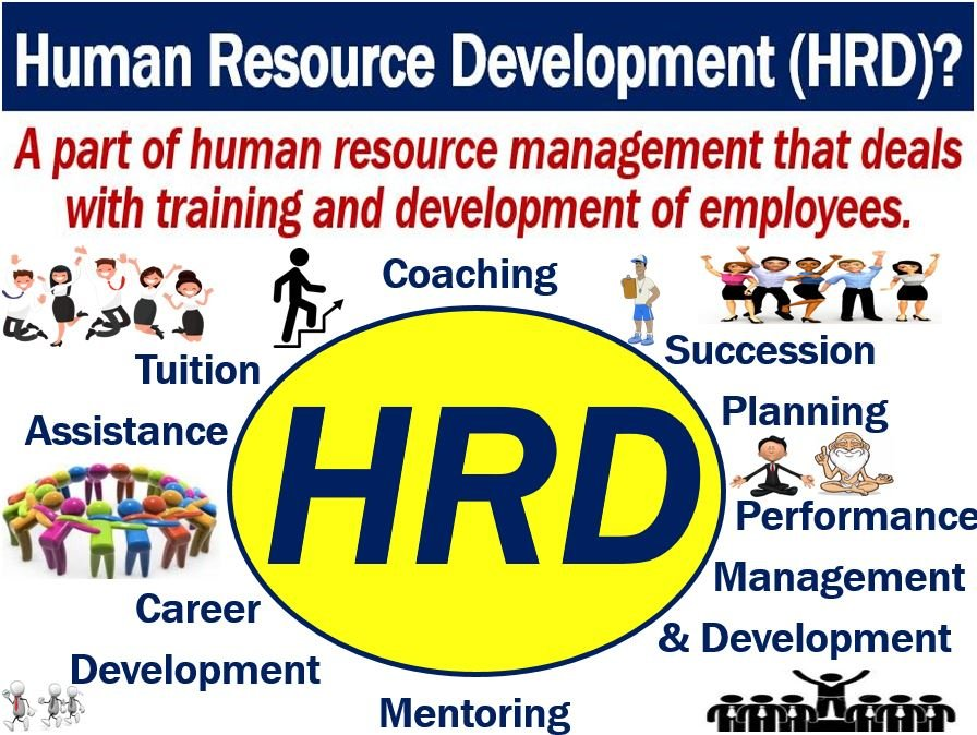 human resource development hrd definition and meaning
