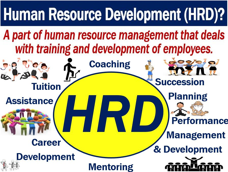 what is human resource development  hrd
