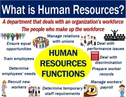 Human resources - definition and functions
