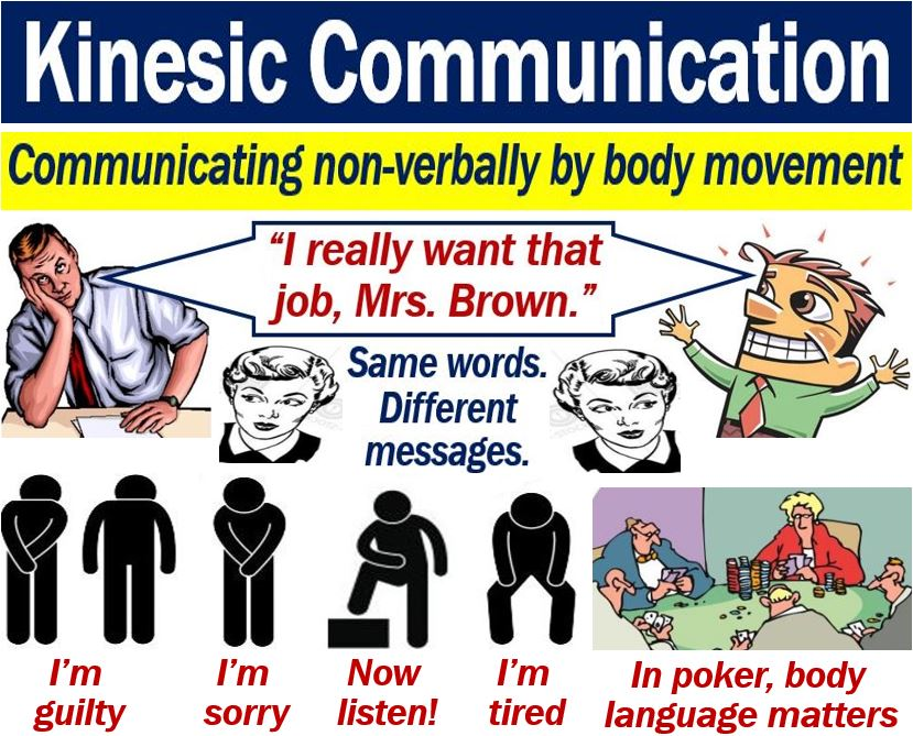 Kinesic Communication Definition And Meaning Market Business News