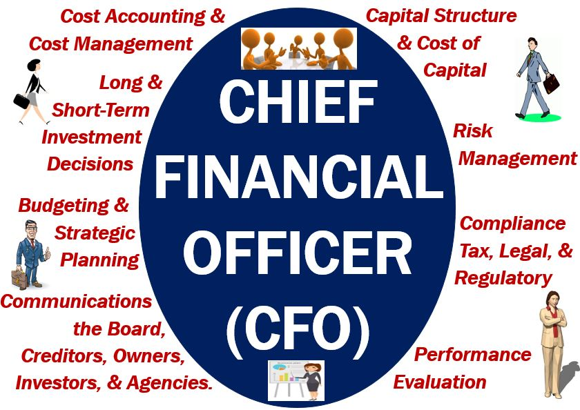 Cfo chief financial officer definition and example - Chief financial officer cfo ...