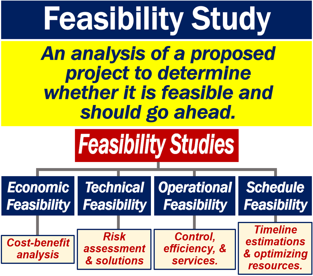 What is a feasibility study? Definition and examples