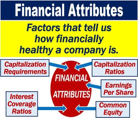 Financial Attributes