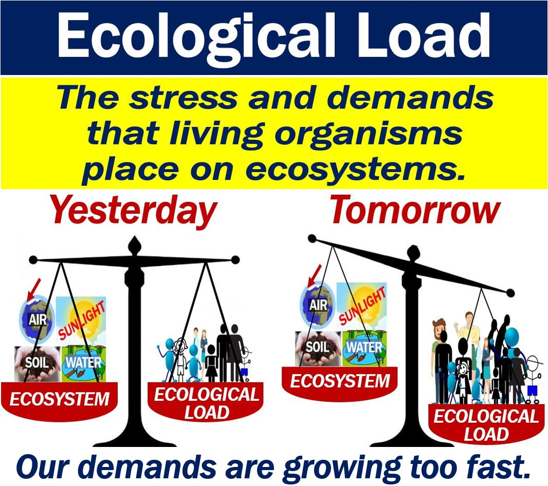 what is ecological load? definition and examples - market business news