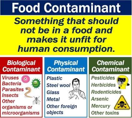 Food Contaminant - definition