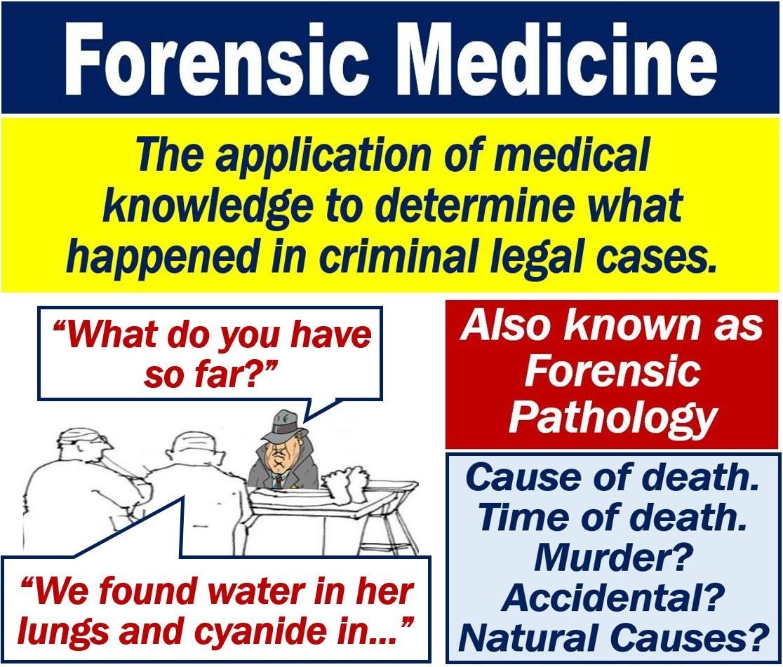 What Is Forensic Medicine Definition And Examples Market Business News