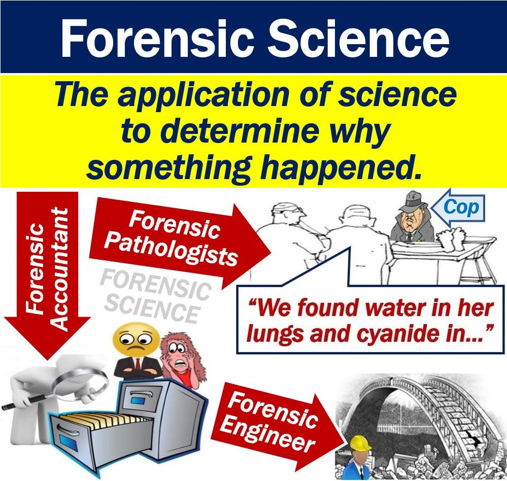What Is Forensic Science Definition And Examples Market Business News