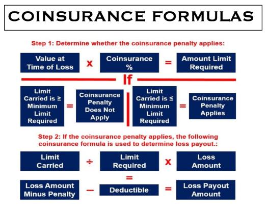 COINSURANCE_FORMULAS