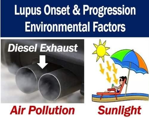 Lupus onset and progression - environmental factors