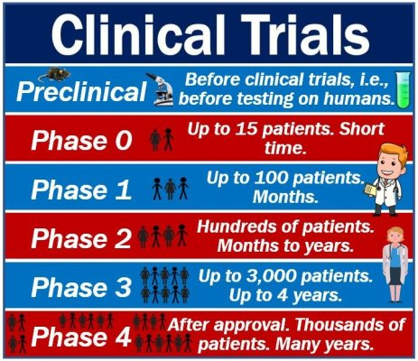 Clinical Trials - Phases