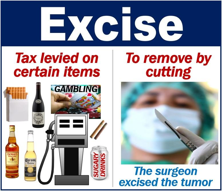 What Is Excise? Definition And Examples