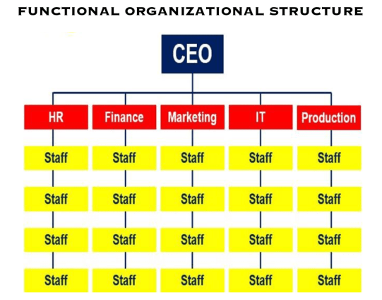 Functional_Organizational_Structure