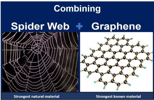 Spider Web and Graphene