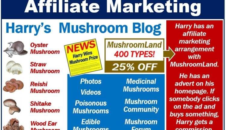 Affiliate Marketing – Image 1