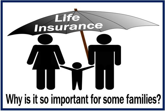 Best life insurance on the market