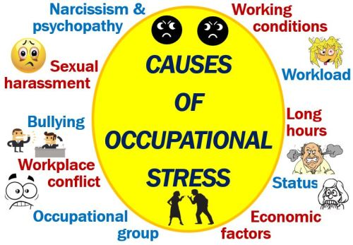 Causes of Occupational stress