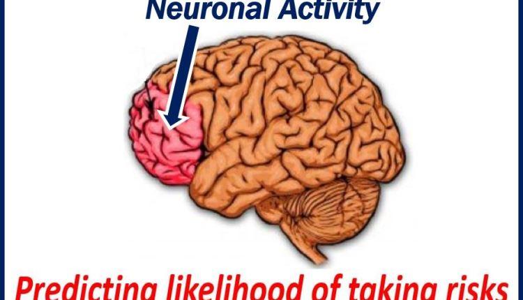 Neuronal Activity thumbnail