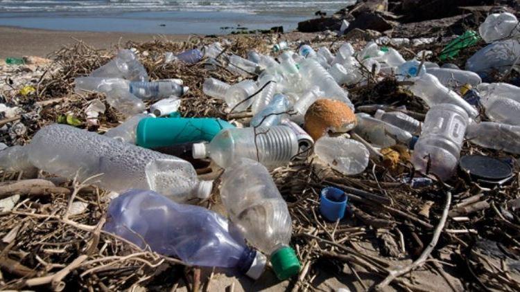 Plastic carrier bag – beach thumbnail