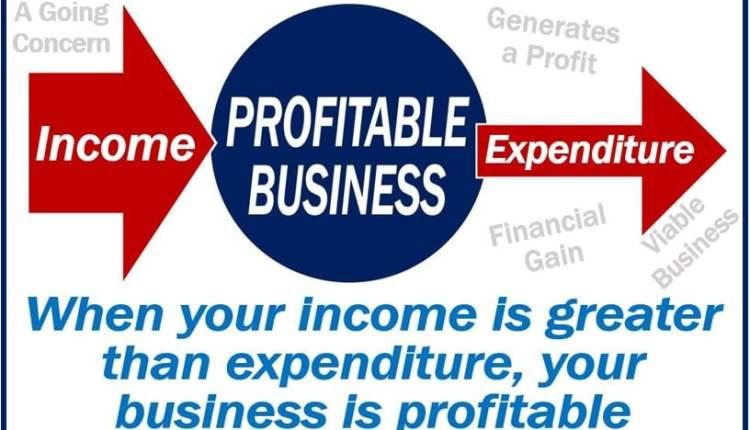 Profitable – definition