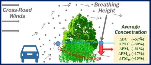 Roadside hedges and trees to reduce car pollution