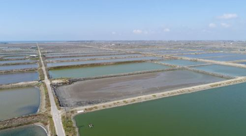 Tainan City Wind Energy Project - Image 1