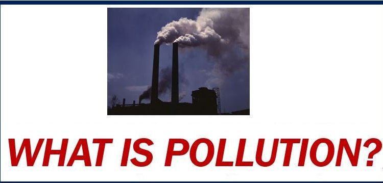 What is pollution thumbnail