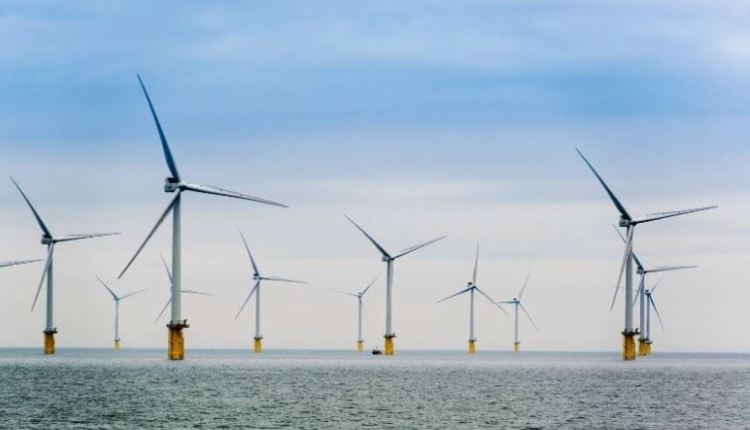 Wind projects – Orsted and TEPCO thumbnail image