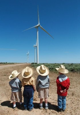 Wyoming wind turbines - Protect wildlife article