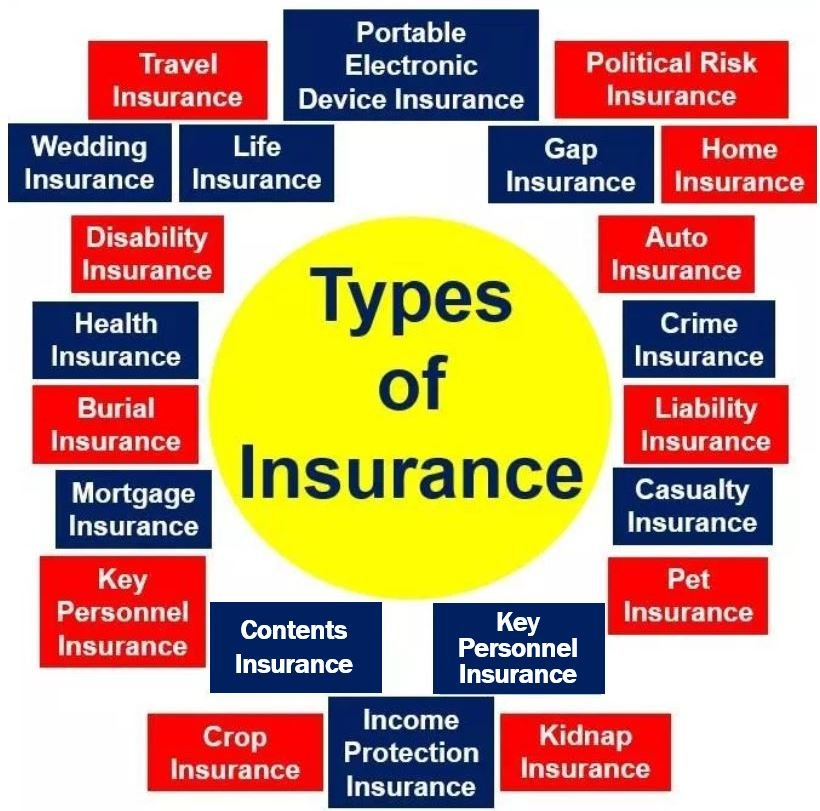 Types of Insurance 3 - image 2
