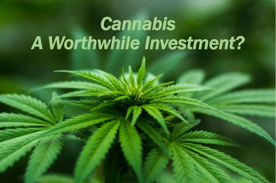 Cannabis investment wise - image 11