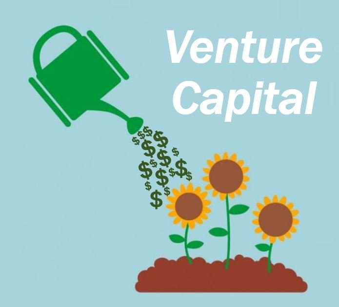 Venture Capital article image88834200