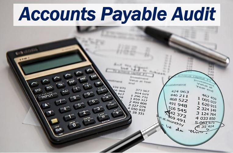 Accounts Payable Audit - image 33333