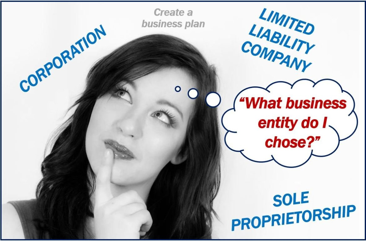 Choosing the right business entity image 8300